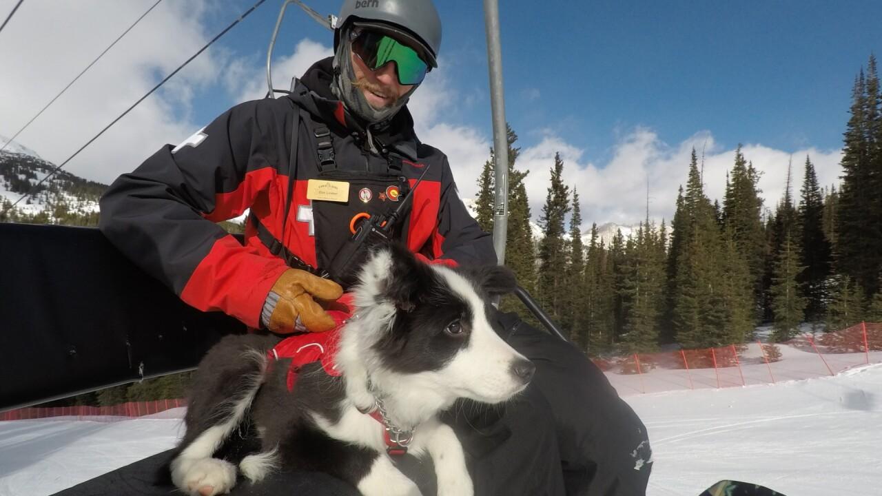 Bandit Loveland Ski Patrol 4.jpg