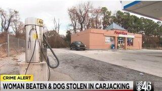 Gas station carjacking