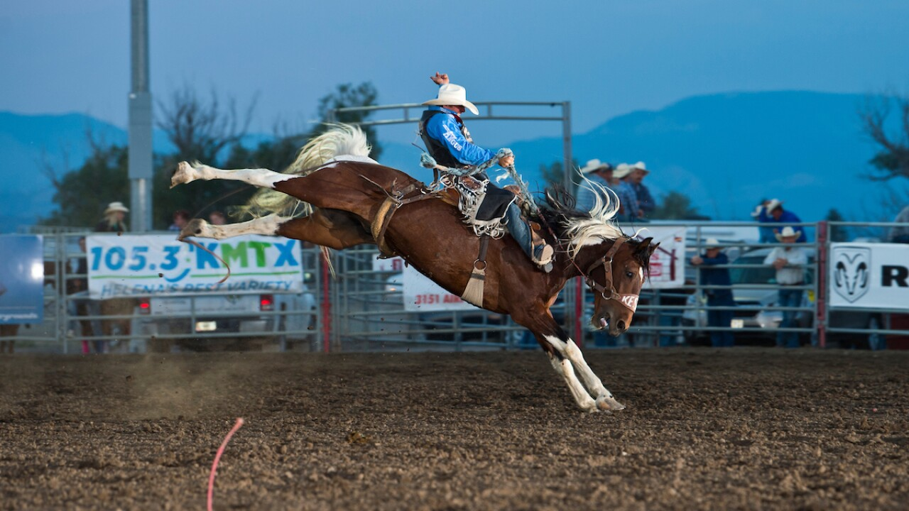 Steven Dent at the 2019 Helena rodeo