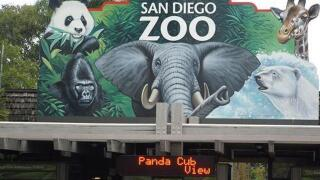 San Diego Zoo named Best in the Country