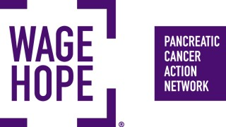Pancreatic Action Network