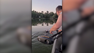 Video shows family rescue bear found swimming with plastic container stuck on head