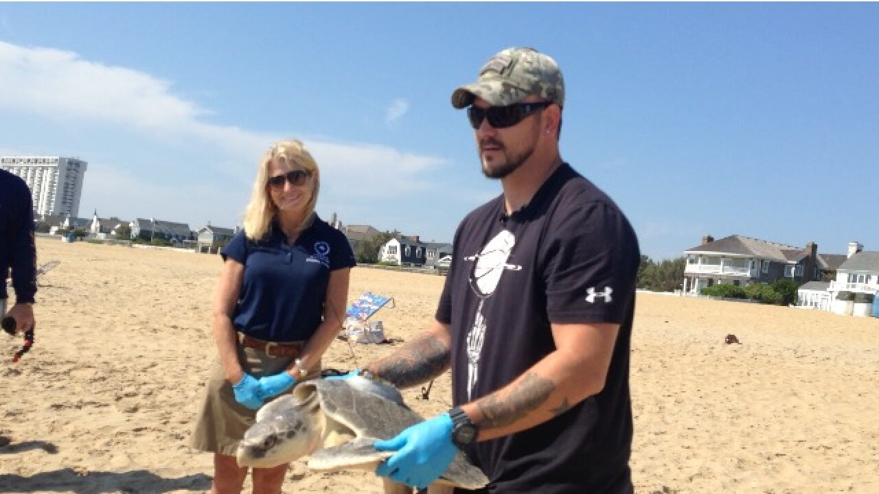 Army veteran helps release sea turtle named after fallen soldier