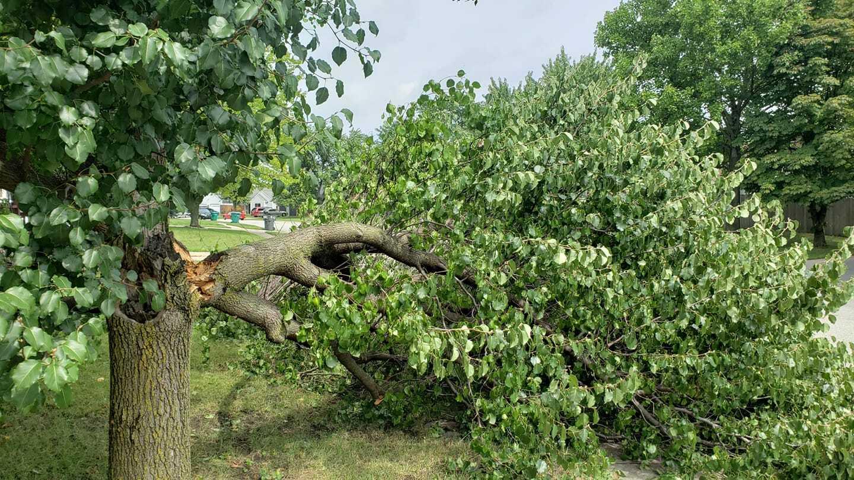Storm Damage 820 Colby Vermillion.jpg