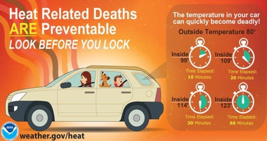Heat Deaths.JPG