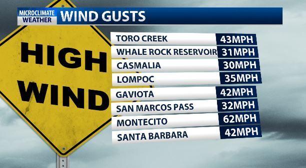 wind gusts 1251.JPG