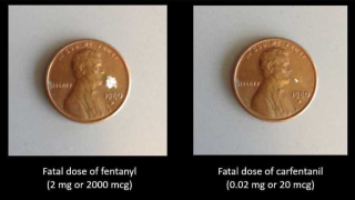 Fentanyl.png