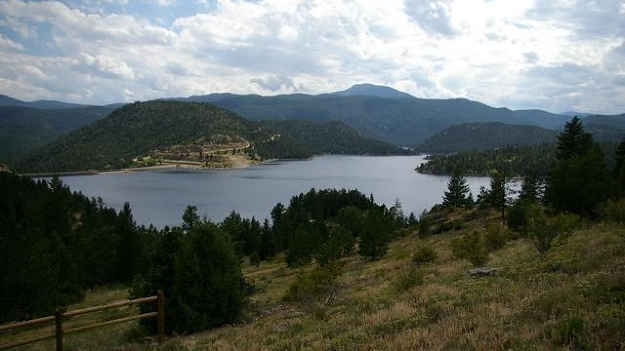 Colorado could lose 650,000 trees in reservoir expansion
