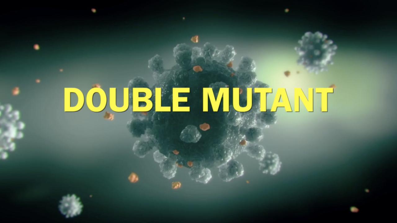 Double mutant