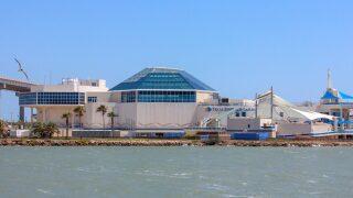 Texas State Aquarium nominated for Best Aquarium in North America