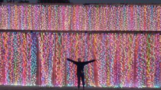 Raprager-Family-Farm-holiday-lights.png