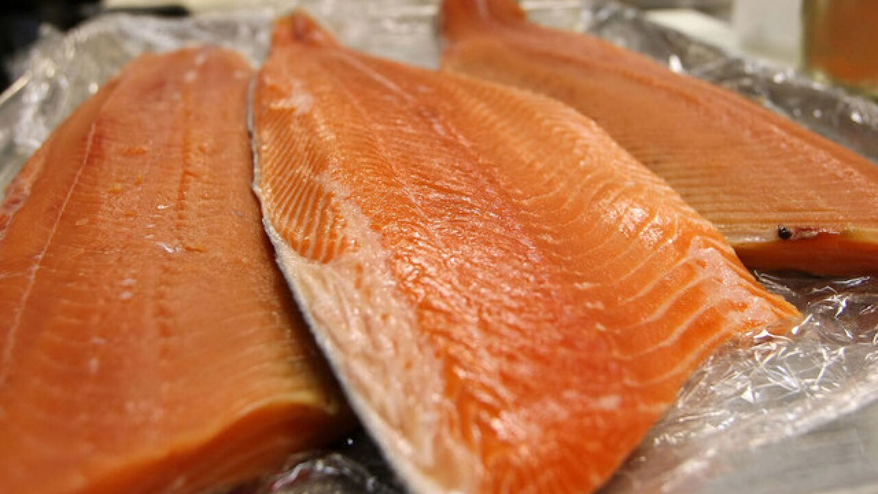 Salmon leading to increase in tapeworms, CDC says