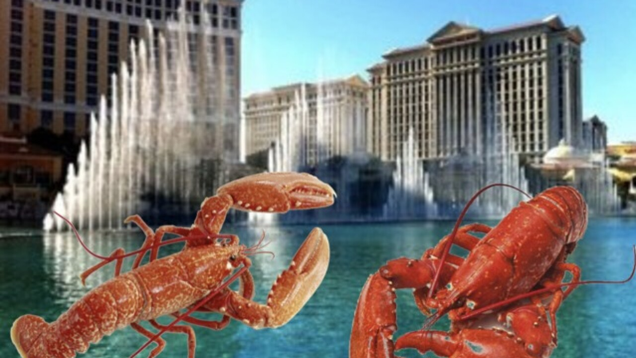 Bellagio cook arrested for stuffing $1,875 worth of lobster tails into backpack