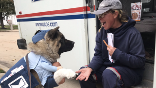 Cleveland Mail Carrier meets dog dressed like her