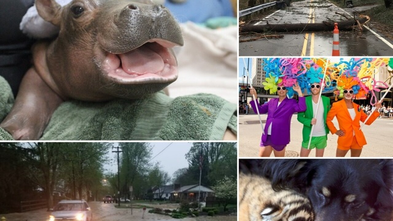 Fiona, wicked weather, tragic fires and more