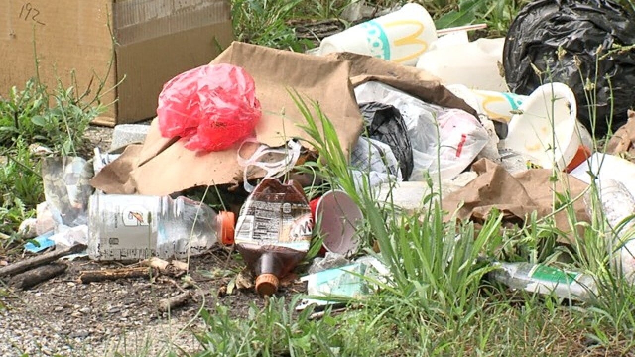 Trashy alleys & illegal dumping: What to know
