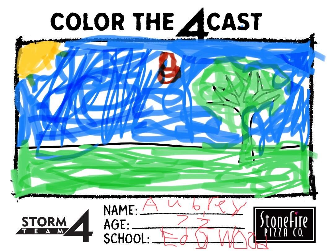 Aubrey Kreiter_Color the 4cast Submission.jpeg