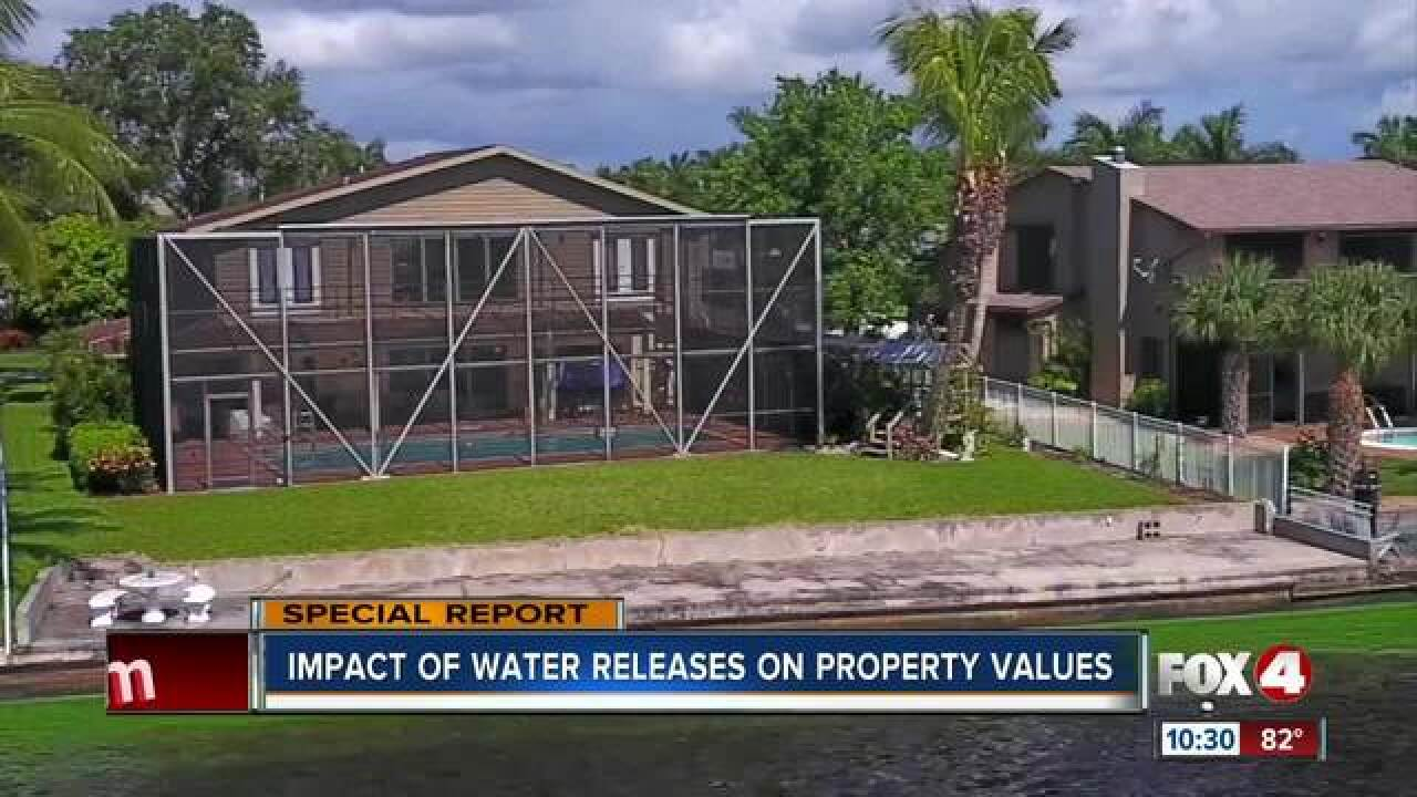 Algae threatening home values in Southwest Fla.