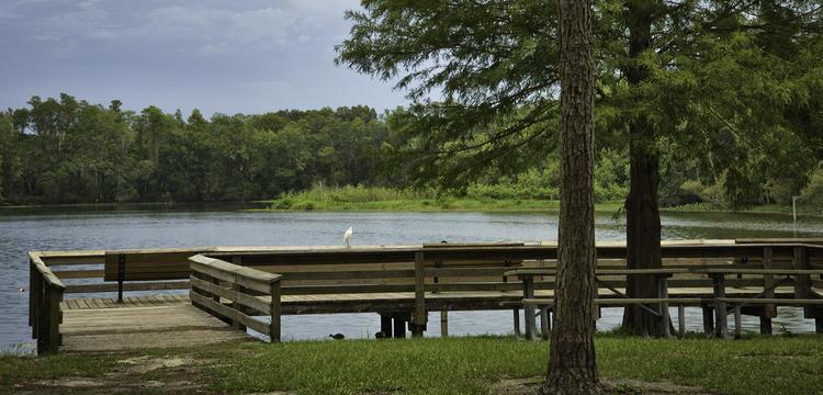 Al Lopez Park by City of Tampa.jpg