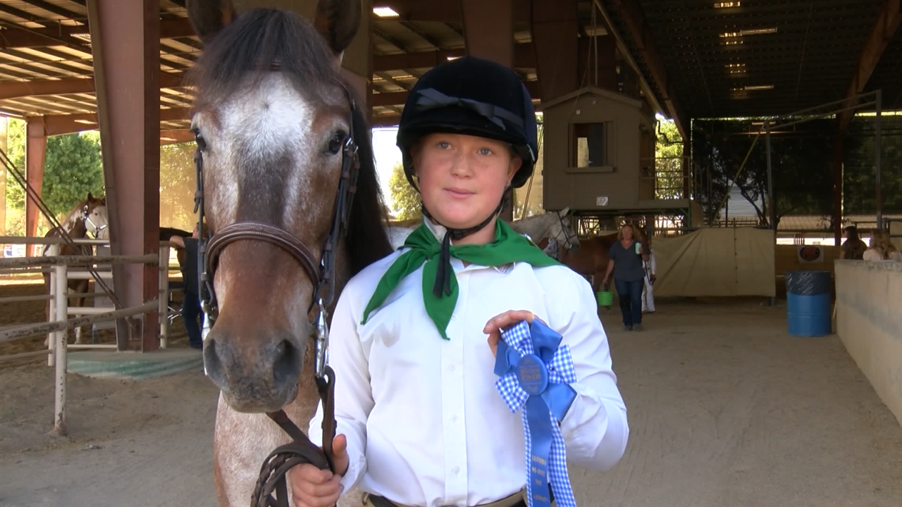 HORSE SHOW MID STATE FAIR 7-21-21.PNG