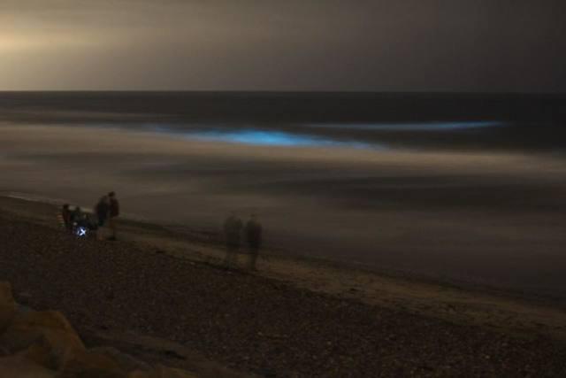 PHOTOS: San Diegans capture neon glow of red tide