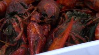 On The Road: Breaux Bridge Crawfish Festival