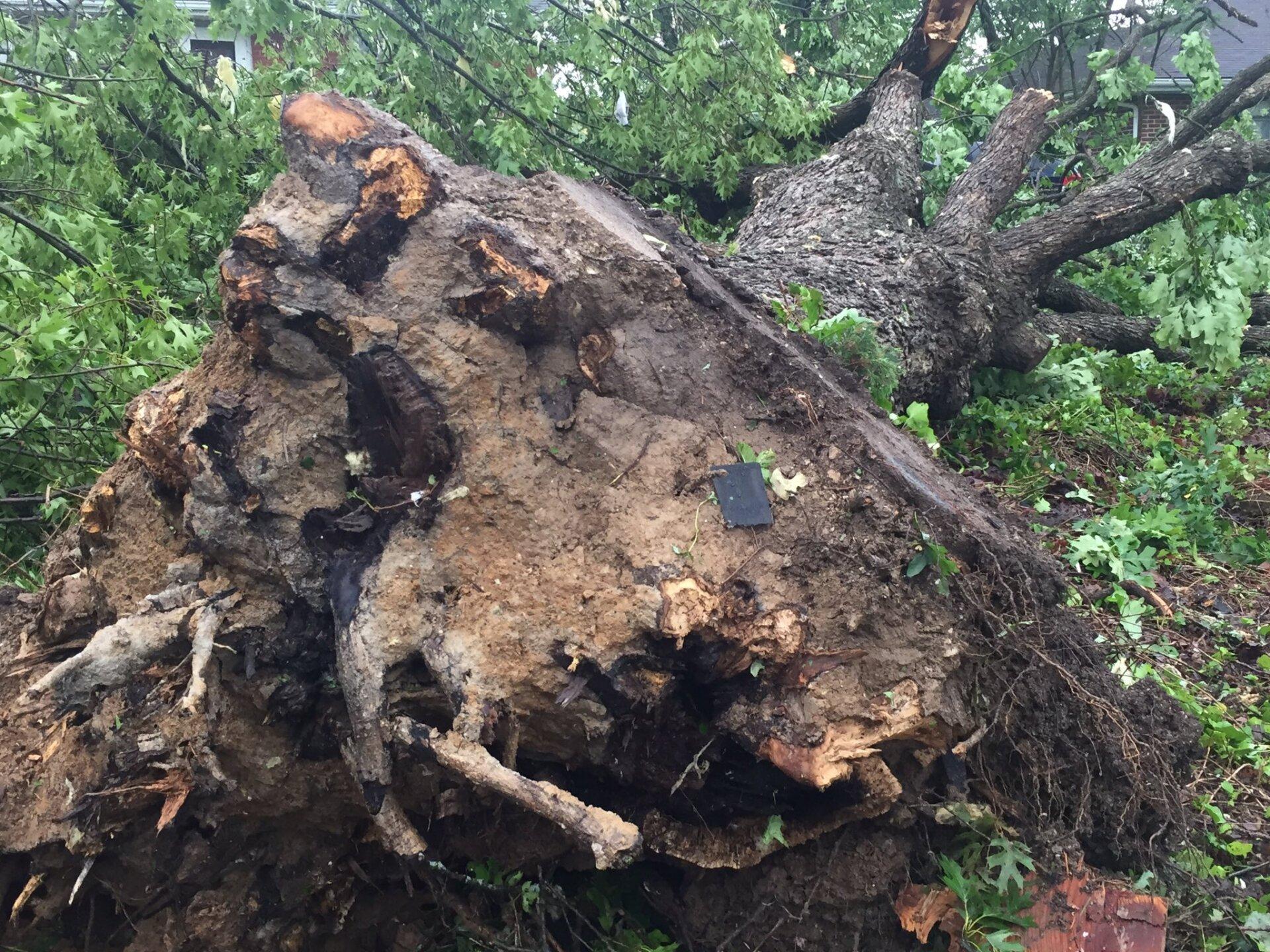 jefferson city tornado 1.jpg