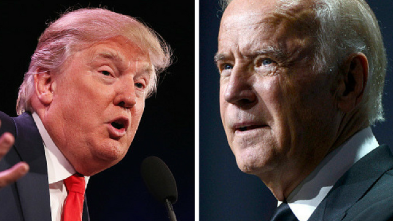 Trump: Biden 'would go down fast and hard' in a fight