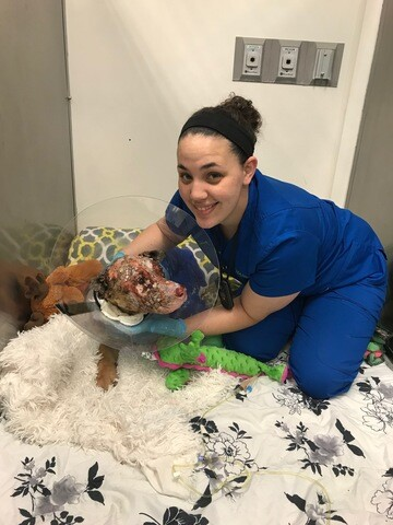 PHOTOS: Justice's journey to recovery