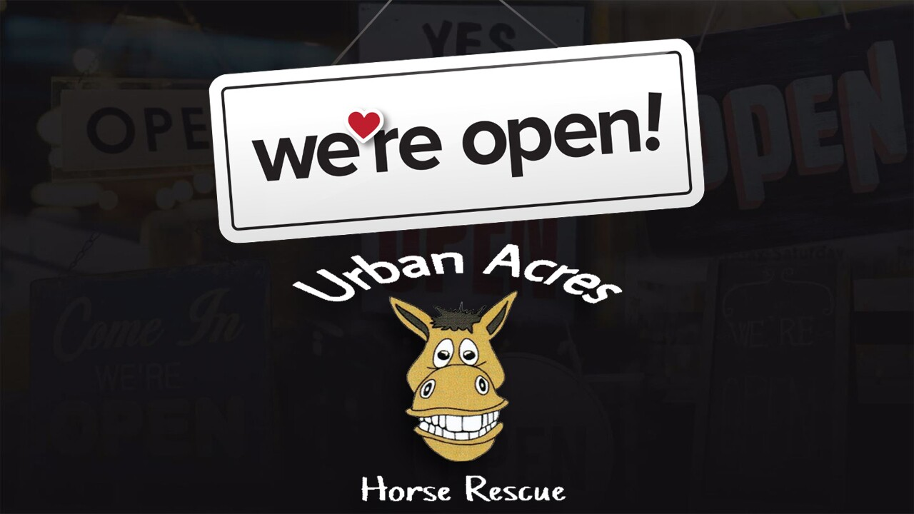 WOO Urban Acres Horse Rescue.jpg