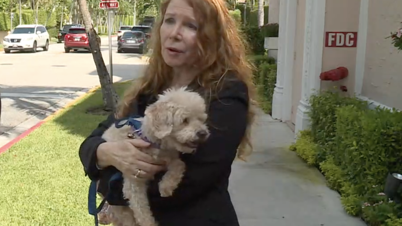 Susan Hargreaves and Rescue Dog Lovey