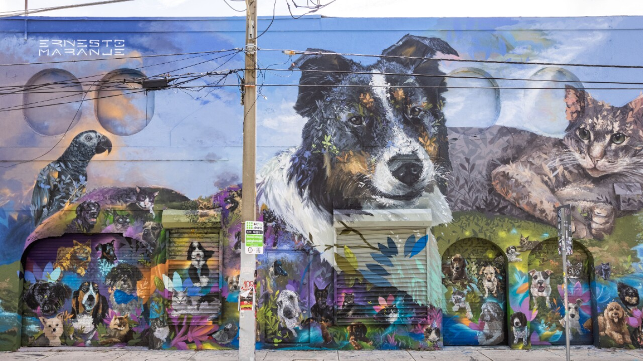 The _Ultimate Pet Portrait_ mural in Wynwood, organized by the pet supply company, Chewy (1).jpg