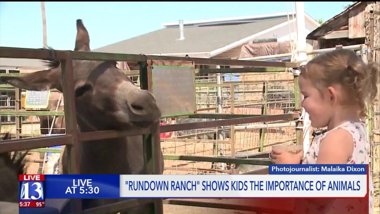RunDown Ranch shows kids the importance ofanimals
