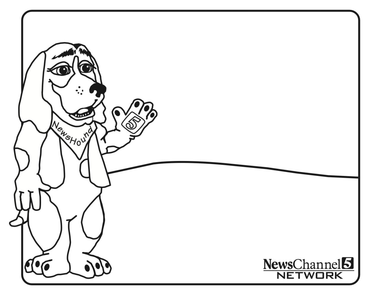Newshound 3
