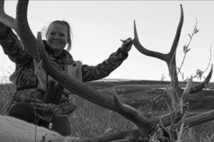 Elk .jpg