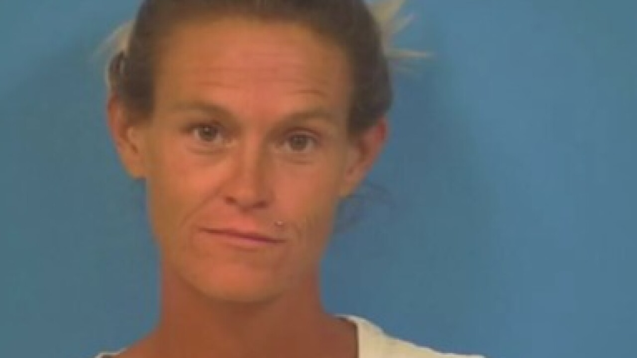 Woman arrested after stolen horse found