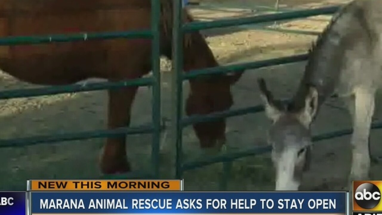 Animal rescue needs public's help to stay open