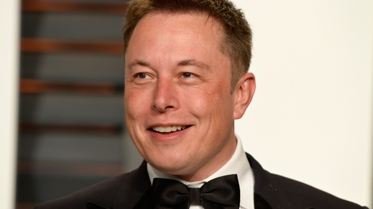 Elon Musk joins court fight against Trump travel ban