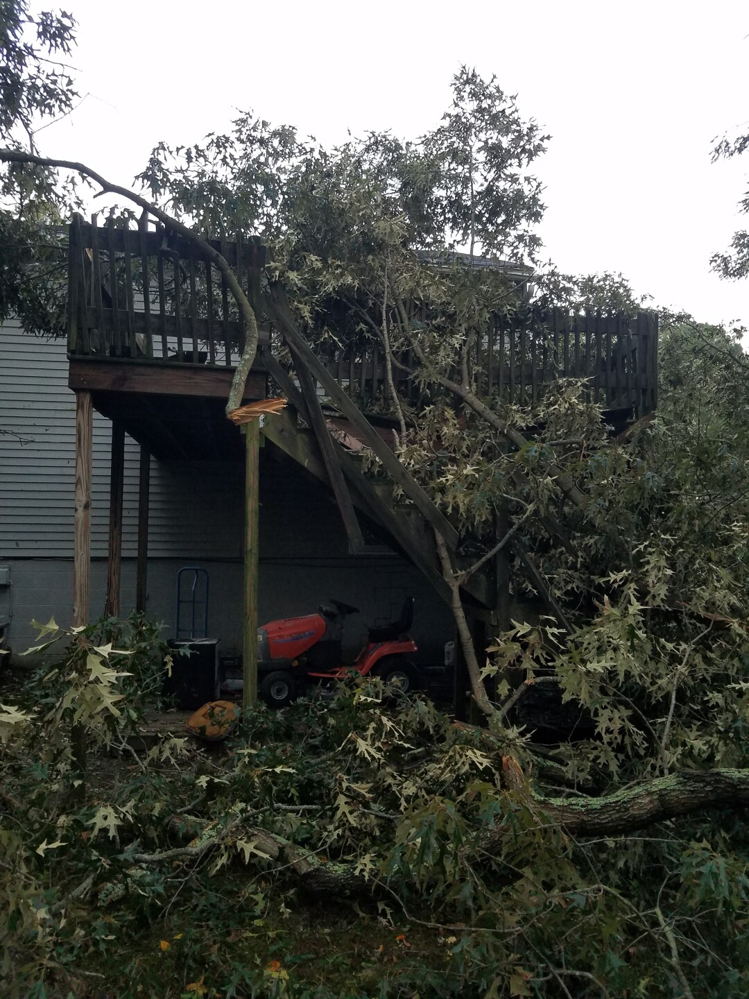 Photos: 7 tornadoes confirmed in Virginia during Tropical Storm Michael