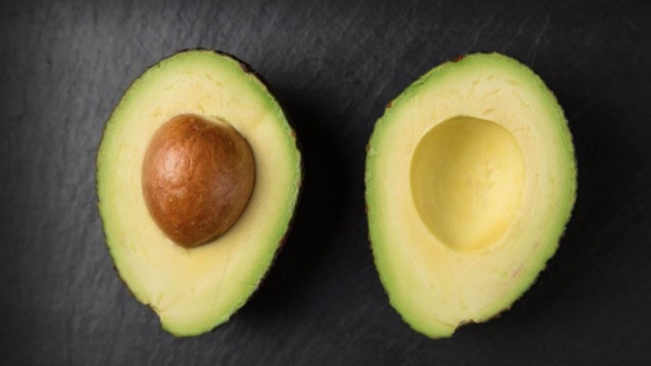 Paid green to eat green: Colleges paying students to eat avocados for study