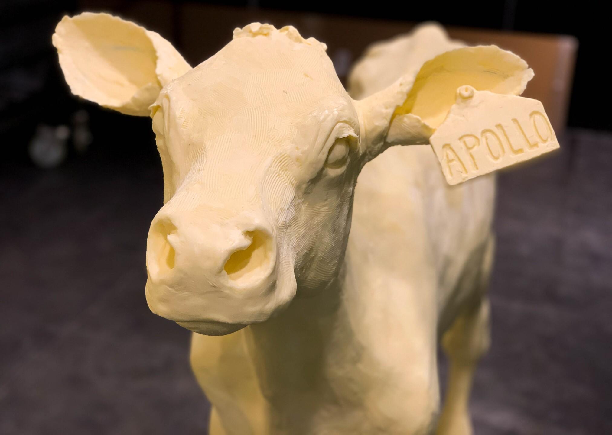 Ohio State Fair Butter Sculptures