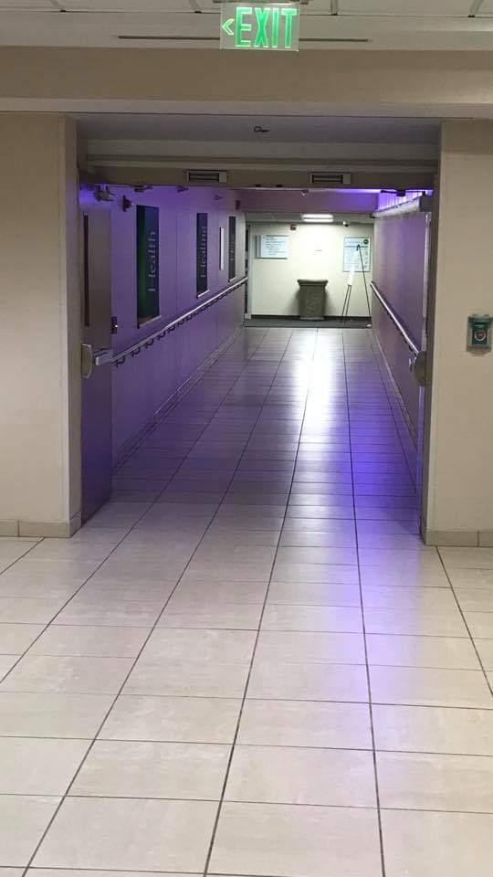 GBMC Purple.jpg