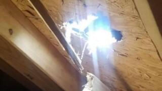 Rock falls through roof