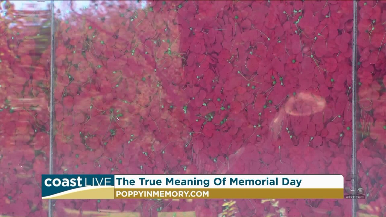 Commemorating the True Significance of Memorial Day on CoastLive