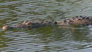 WTXL ABC 27 Florida News| Tallahassee, Crawfordville, Valdosta News