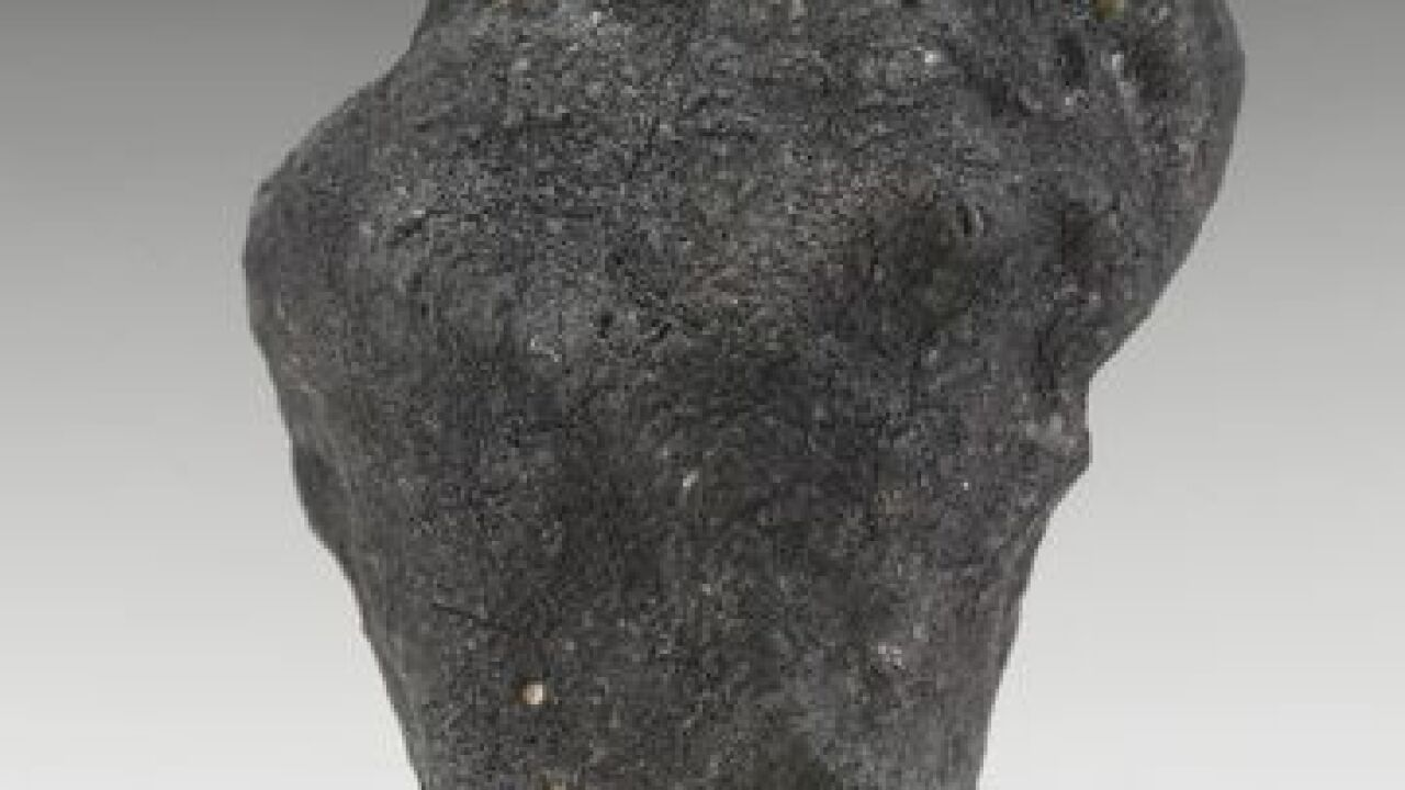 Michigan meteorite from January's fireball to be auctioned