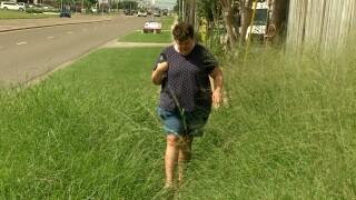 Shawna Harbaugh overgrown grass.jpg