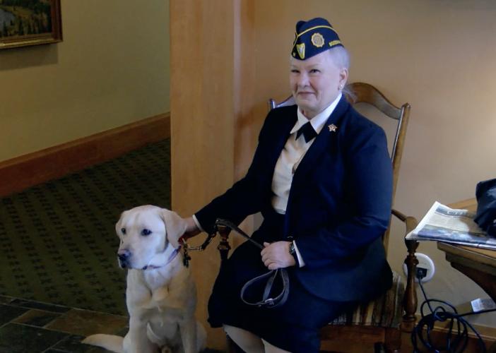 Bozeman Veteran Service Dog