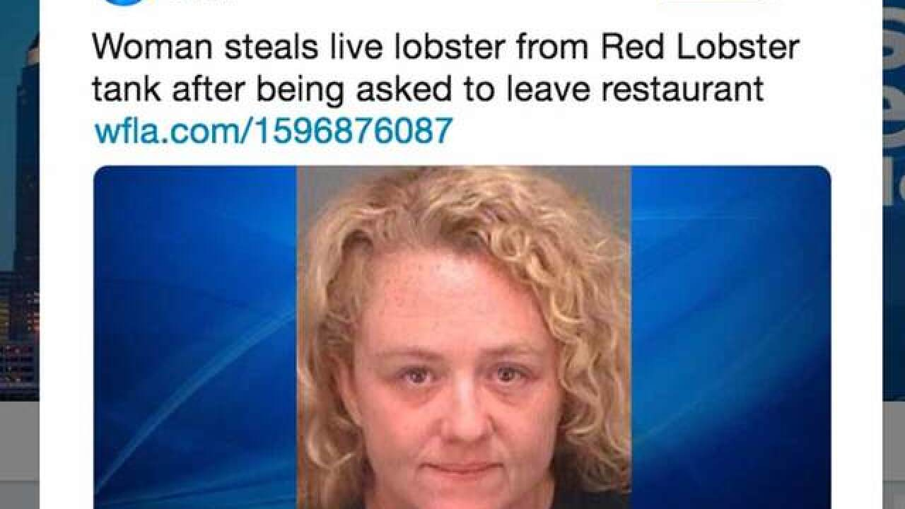 Florida woman charged with stealing live lobster from Red Lobster restaurant