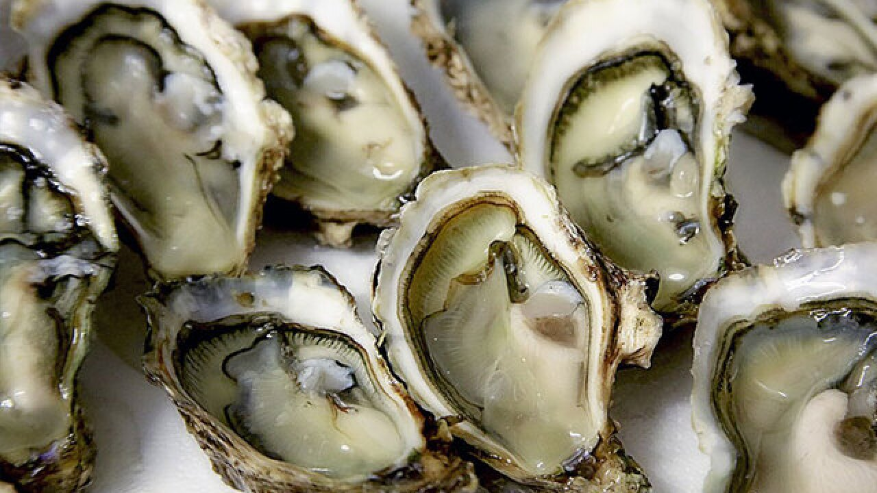 71-year-old man dies from Vibrio vulnificus infection after eating oyster in Sarasota